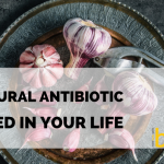 Raw Garlic – The Only Natural Antibiotic You Need in Your Life