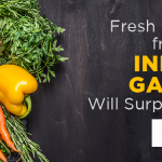 Fresh Produce from This Indoor Garden Will Surprise You