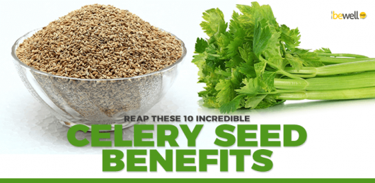 <thrive_headline click tho-post-5000 tho-test-378>Top 10 Celery Seeds Health Benefits</thrive_headline>