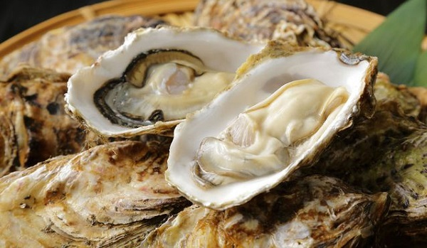 10 Best Foods to Prevent Flu: Oysters