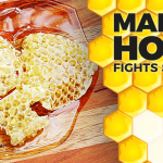 How Manuka Honey Fights Superbugs Will Blow Your Mind