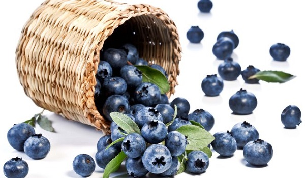 Overhyped Superfoods: Blueberries