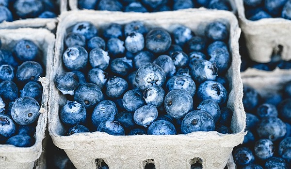Foods for Diabetics - Blueberries