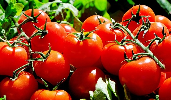 Natural way to clean arteries: Tomatoes