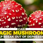 Can Magic Mushrooms Help Break Out Of Depression?
