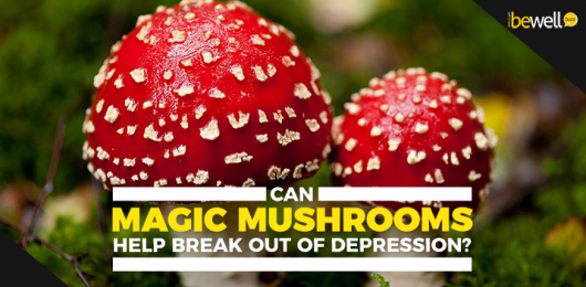 <thrive_headline click tho-post-51249 tho-test-649>Can Magic Mushrooms Help Break Out Of Depression?</thrive_headline>