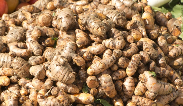 Turmeric is a spice made from a root in the ginger family.