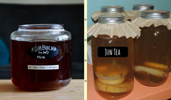 Kombucha and Jun Tea