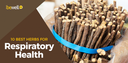 <thrive_headline click tho-post-51838 tho-test-646>Got Respiratory Health Issues? These 10 Herbal Remedies Will Help</thrive_headline>