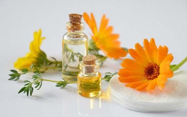 Are you wondering how you can benefit from essential oils?
