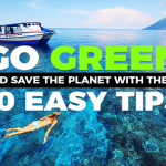 Save The Planet: 10 Small Steps That Make A Big Impact