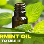 Peppermint Oil: 5 Key Benefits, How To Use and When To Avoid