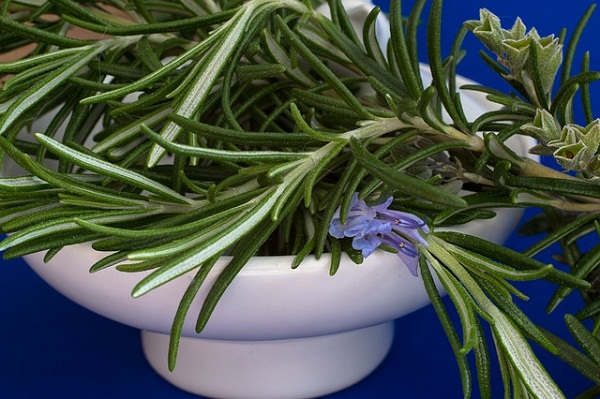Rosemary contains many antioxidants and phytochemicals.