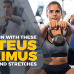 How To Strengthen Your Gluteus Maximus And Avert Injuries