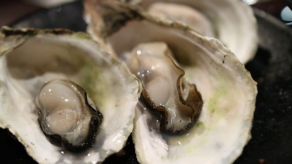 Good sources of zinc include oysters, shellfish, red meat, poultry, beans, nuts, and whole grains.