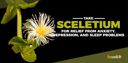 Why You Need to Take Sceletium Supplement