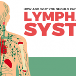 Your Lymphatic System: What It Does and How to Keep It Healthy