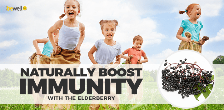 The Elderberry Can Boost Your Immunity Naturally