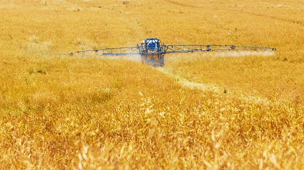 Pesticides that are sprayed on our crops can wreak major havoc on your body and lead to the development of type 2 diabetes.