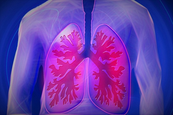 Your lungs work tirelessly, bringing in oxygen to power each and every one of your organs.