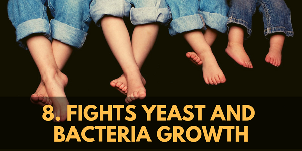 MCT oil Fights Yeast and Bacteria Growth