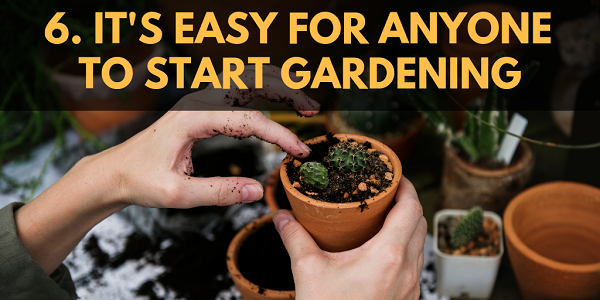It's Easy for Anyone to Start Gardening